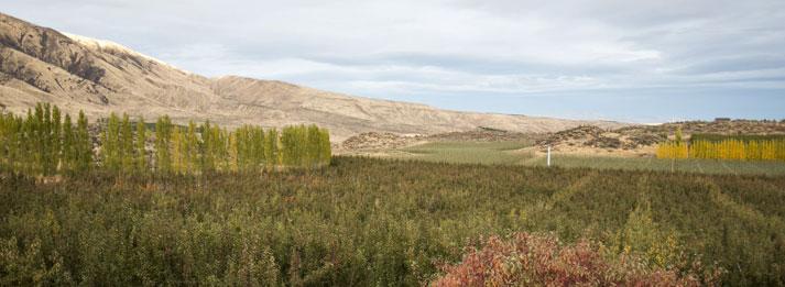 yakima-valley